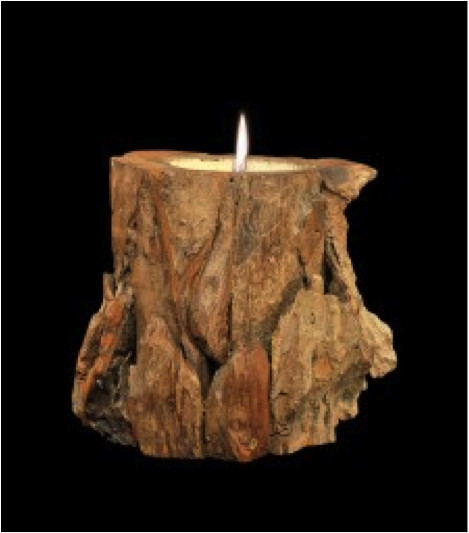 Wood Carved country apple spice scent